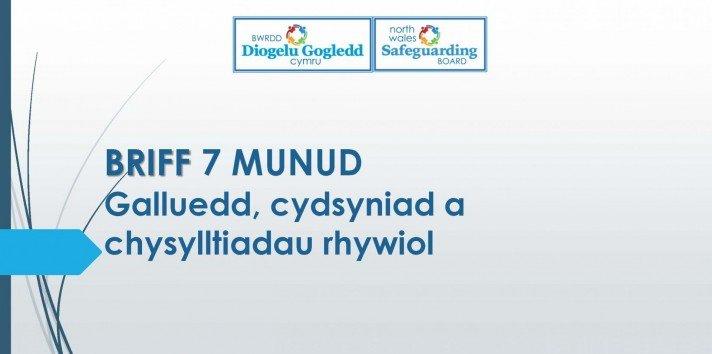 Galluedd, cydsyniad a chysylltiadau rhywiol