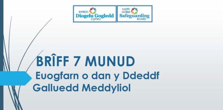 Euogfarn o dan y Ddeddf Galluedd Meddyliol