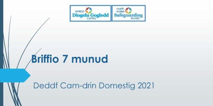 DeddfCam-drin Domestig 2021