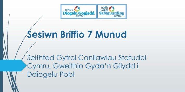 Seithfed Gyfrol Canllawiau Statudol Cymru, Gweithio Gyda'n Gilydd i Ddiogelu Pobl